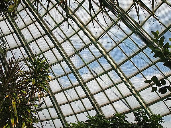スポーツ施設 姫路市立手柄山温室植物園 ネット設置工事